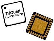 TriQuint T1G6001032-SM 10W GaN Transistor