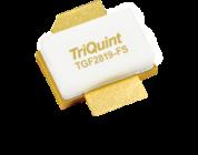 TriQuint TGF2819-FL and TGF2819-FS GaN transistors offer 100W Peak Power